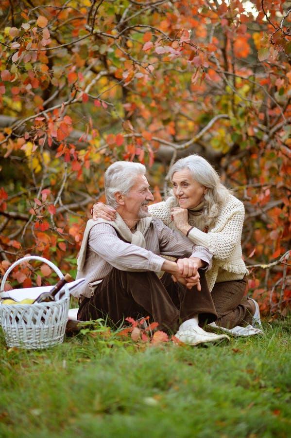 Retrato de los pares mayores que tienen comida campestre al aire libre imágenes de archivo libres de regalías