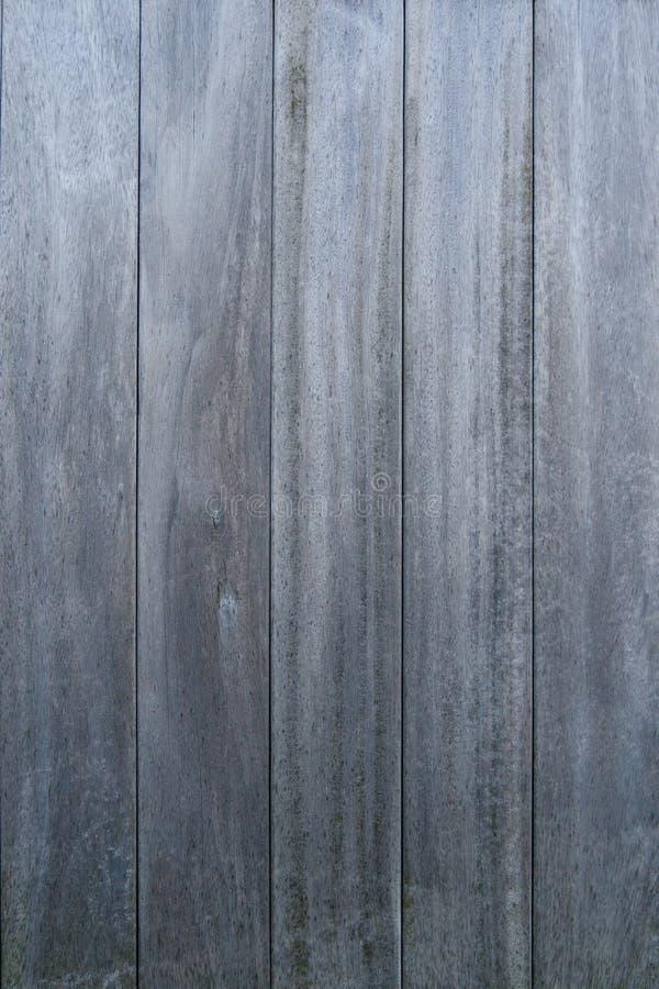 Retrato de madeira do paneling imagens de stock