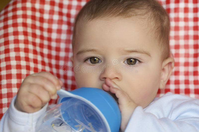 Retrato de 8 meses del bebé fotos de archivo libres de regalías