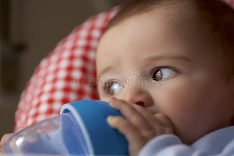 Retrato de 8 meses del bebé imagen de archivo