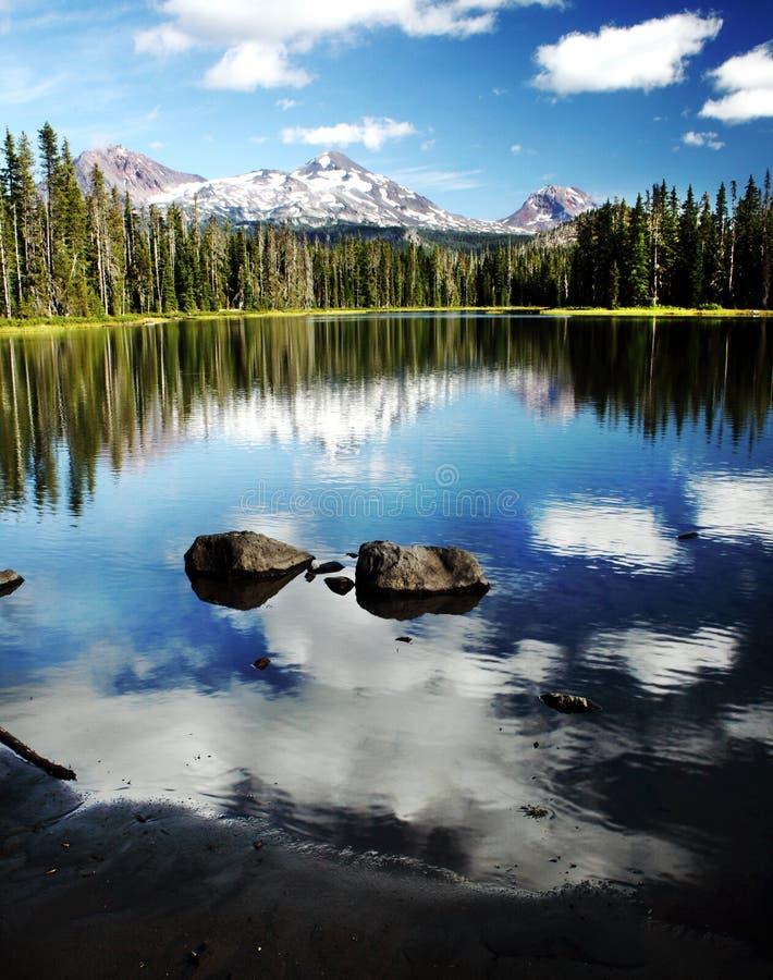 Retrato de Oregon imagem de stock royalty free
