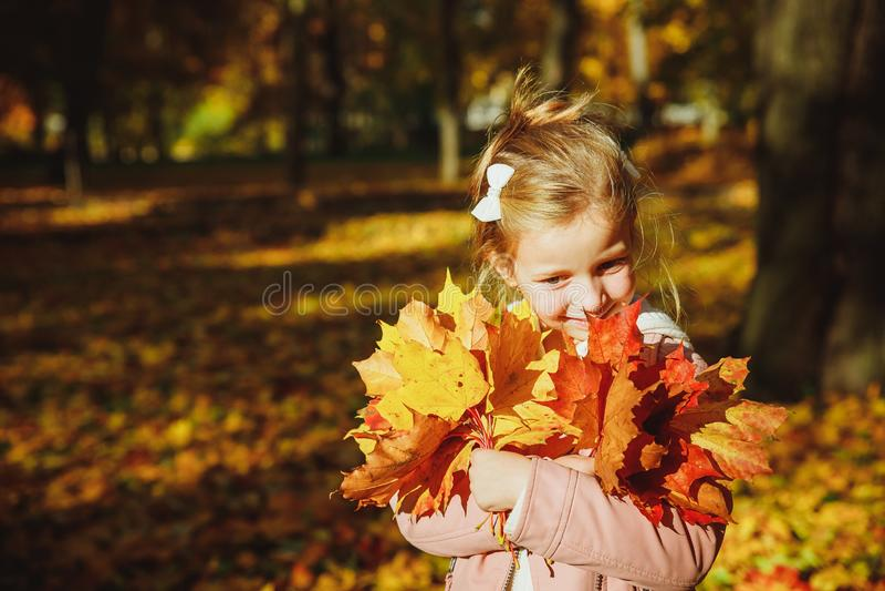 Retrato de otoño de una linda chica rizada. Niña graciosa jugando con hojas amarillas en el bosque Niño en un paseo en el bosqu fotos de archivo libres de regalías