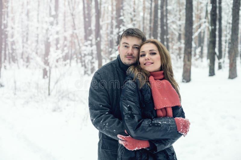 Retrato de pares felizes no parque do inverno foto de stock