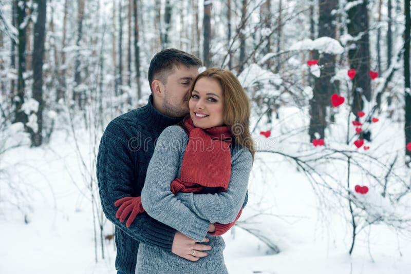 Retrato de pares felizes no parque do inverno fotos de stock