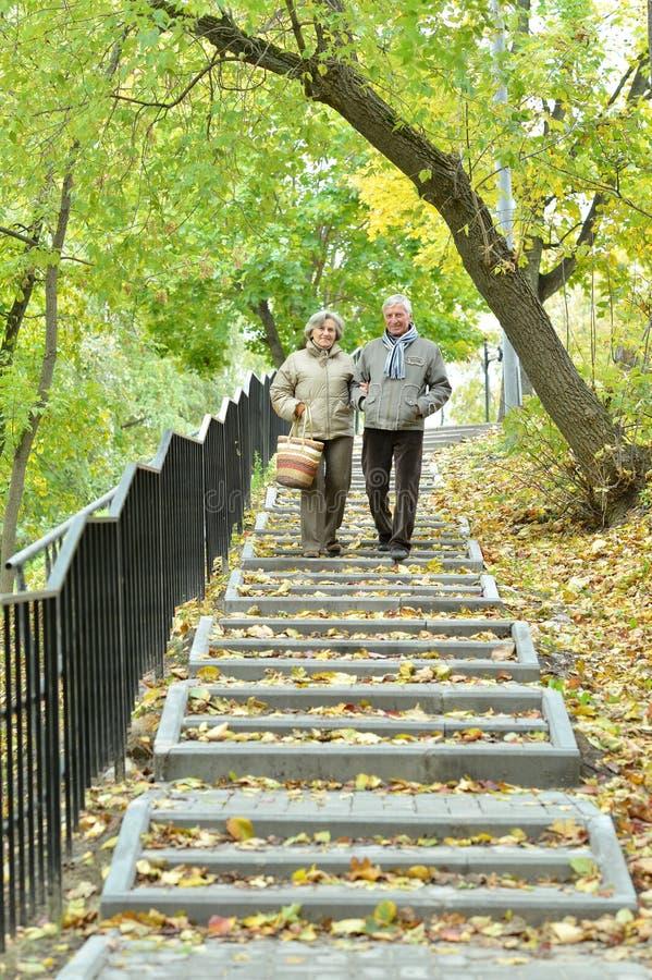 Retrato de pares mayores en parque del oto?o fotos de archivo