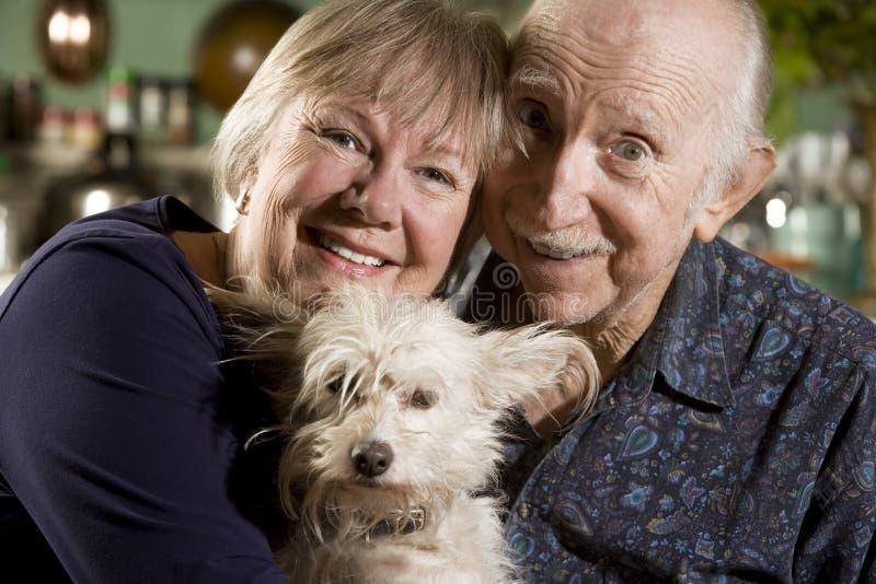 Retrato de pares sênior com cão foto de stock royalty free