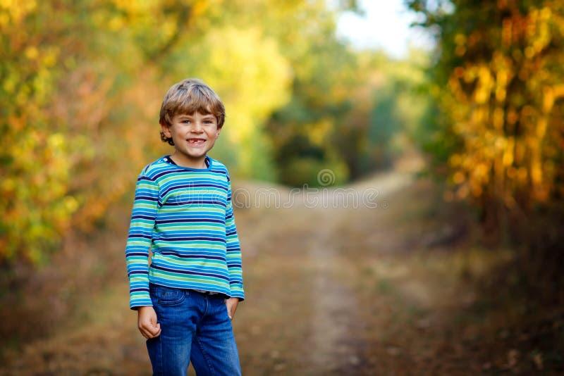 Retrato de pouco menino fresco da criança na criança saudável feliz da floresta que tem o divertimento no outono adiantado morno  imagens de stock royalty free