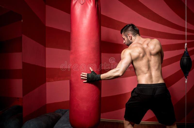 Retrato de pugilista profissional masculino determinado, preparando-se para a luta, o treinamento e praticar fotografia de stock royalty free