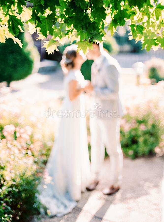 Retrato de recienes casados felices en parque del verano imagenes de archivo