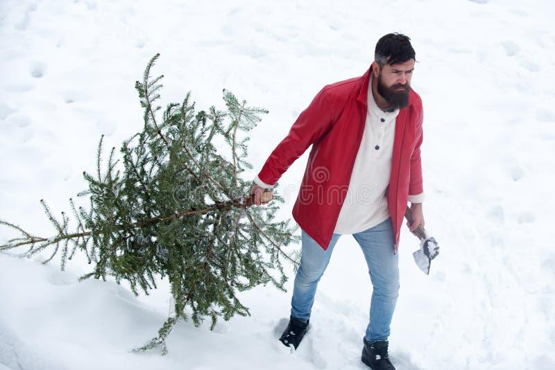 Retrato de Santa Claus madura brutal Feliz Navidad y tarjeta de felicitaci?n de la Feliz A?o Nuevo con el copia-espacio El hombre fotos de archivo libres de regalías