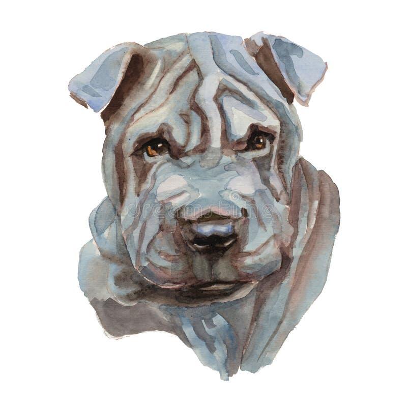 Retrato de Shar Pei Dog ilustración del vector