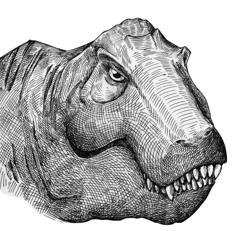 Retrato de T-rex ilustração stock