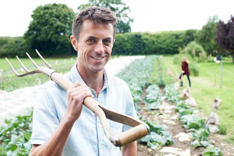Retrato de trabalhadores de exploração agrícola no campo orgânico imagens de stock