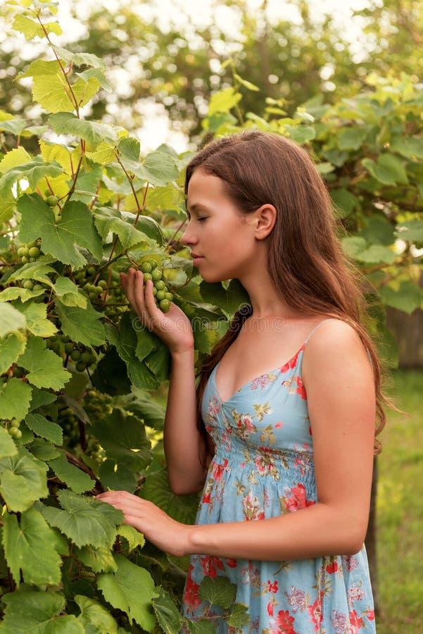 Retrato de um adolescente fêmea novo que está entre as folhas de uma árvore e que aspira um grupo de uvas foto de stock