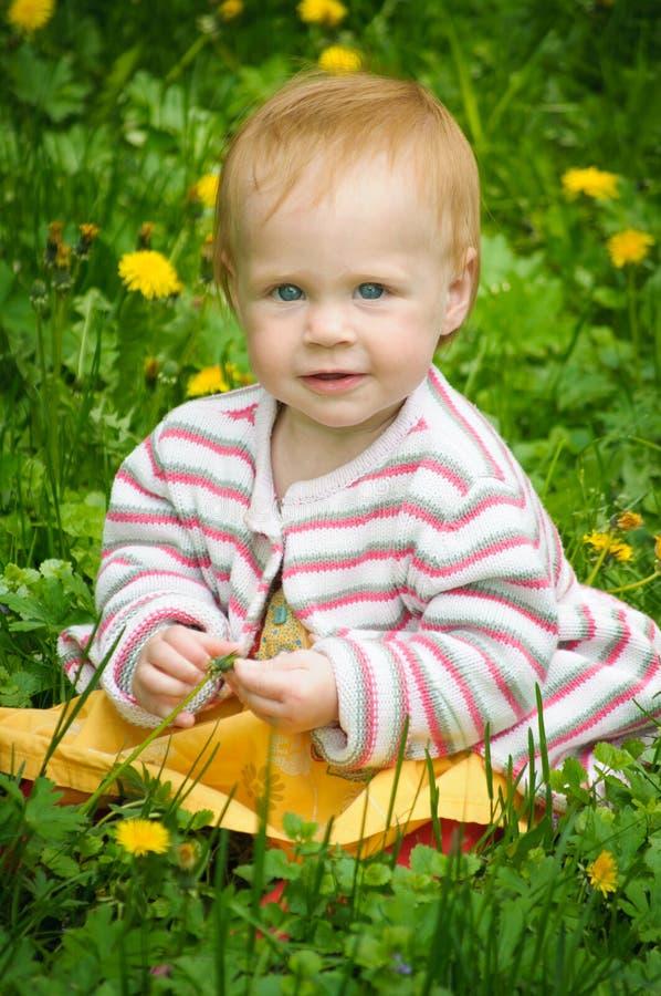Retrato de um bebê pequeno bonito na grama imagens de stock royalty free