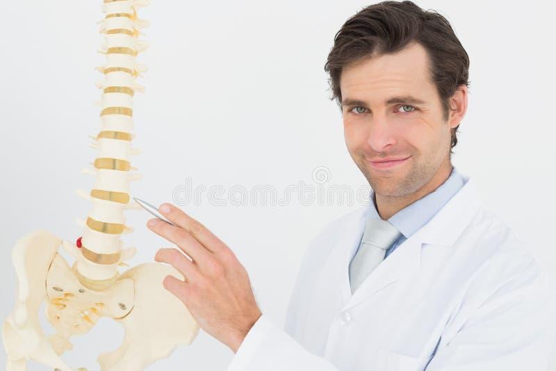 Retrato de um doutor masculino de sorriso com modelo de esqueleto fotografia de stock