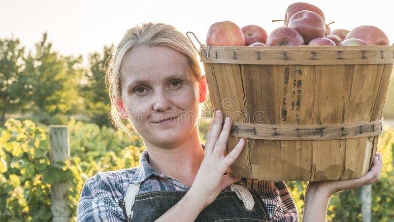 Retrato de um fazendeiro da jovem mulher que guarda uma cesta com as maçãs maduras de seu jardim em seu ombro fotos de stock