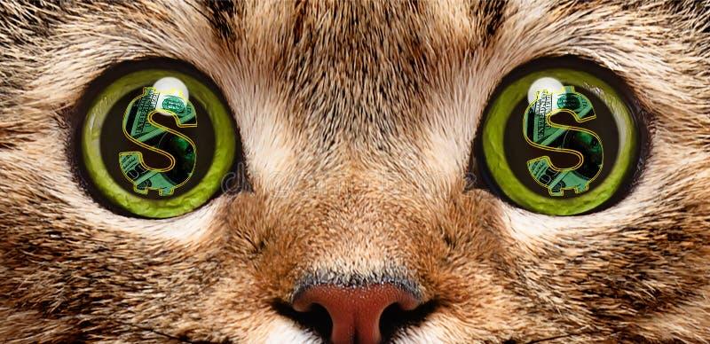 Retrato de um gato cujos nos olhos um símbolo do dólar ilustração do vetor