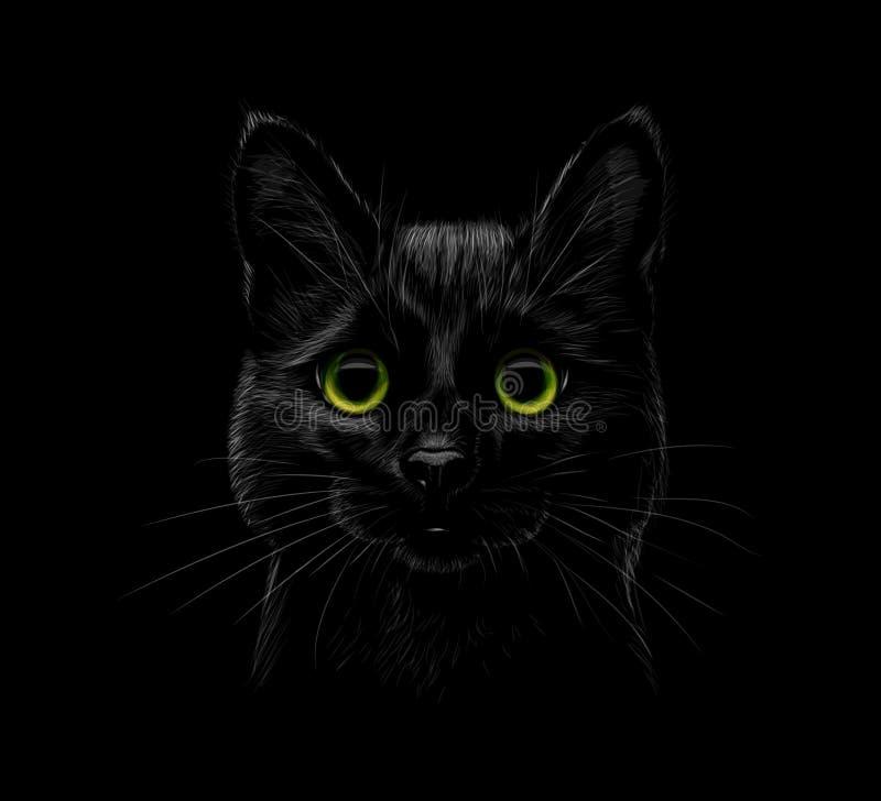 Retrato de um gato em um fundo preto ilustração royalty free