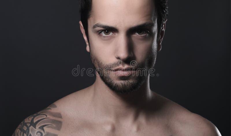 Retrato de um homem bonito foto de stock royalty free