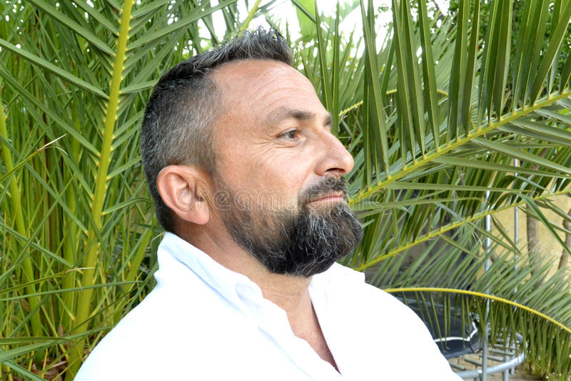 Retrato de um homem com barba fotos de stock