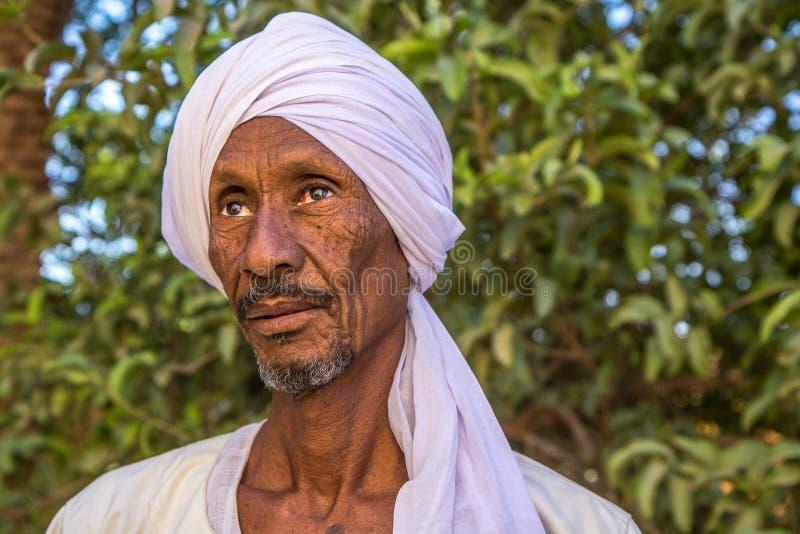 Retrato de um homem de Sudenese imagens de stock