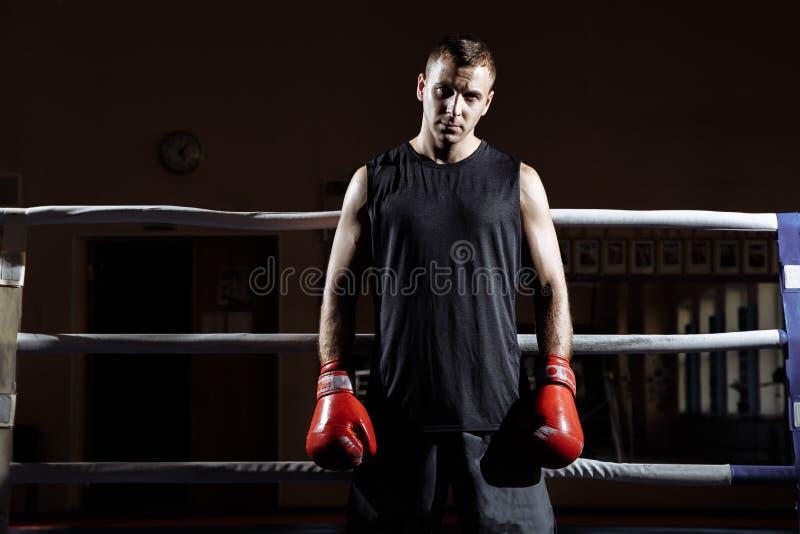 Retrato de um homem novo muscular em luvas de encaixotamento no anel fotografia de stock royalty free