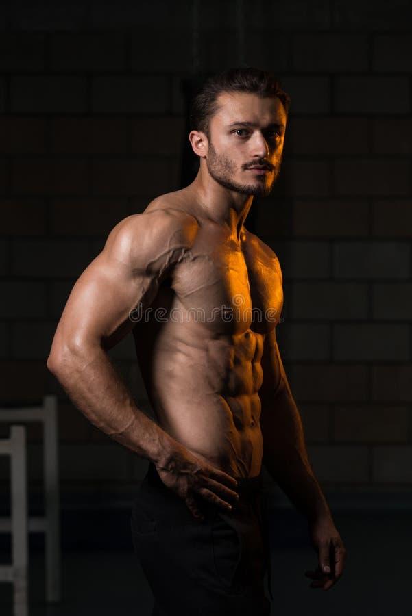 Retrato de um homem novo muscular fisicamente cabido imagem de stock royalty free