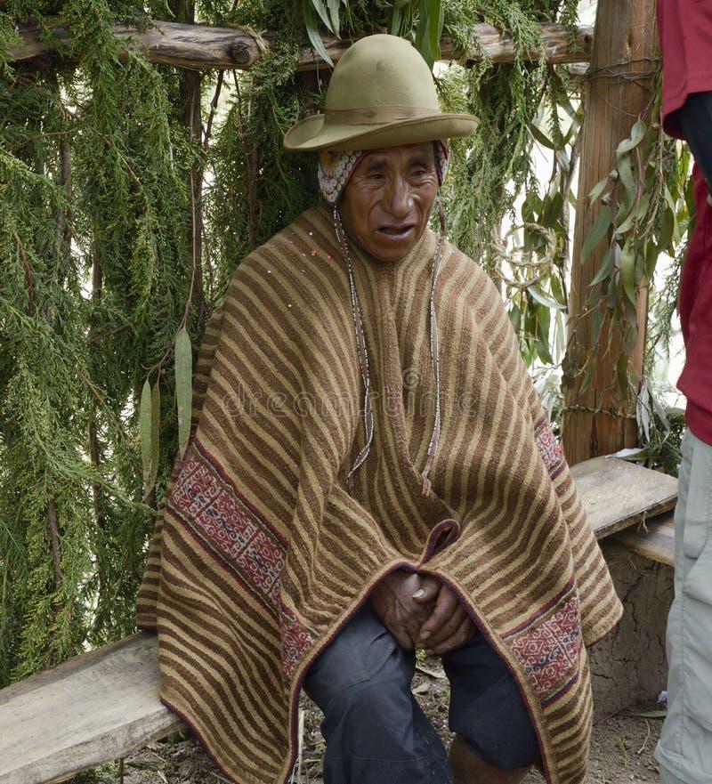 Retrato de um homem peruano nativo que veste a veste andina típica fotos de stock royalty free