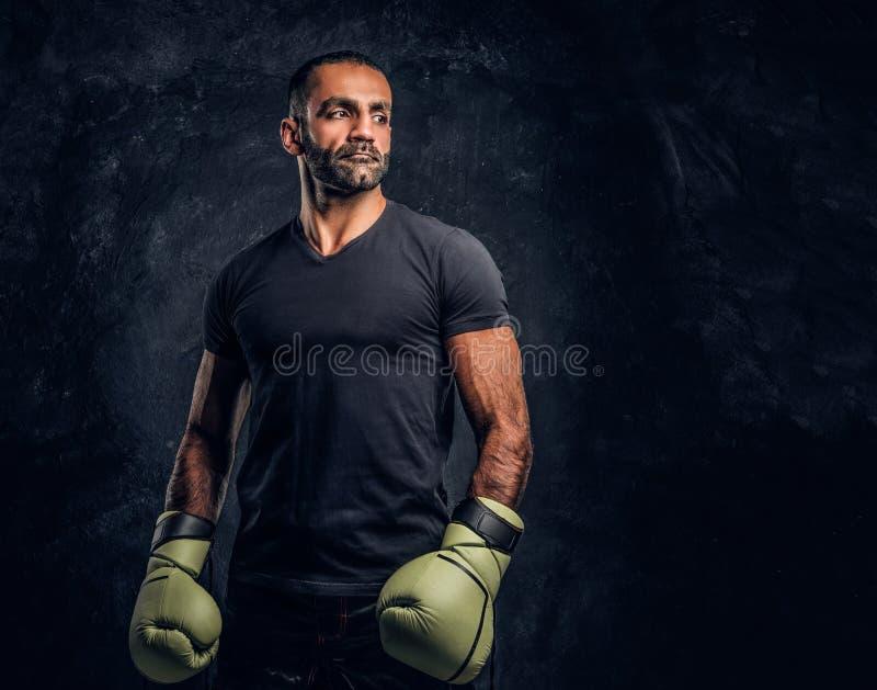 Retrato de um lutador profissional brutal em uma camisa preta e em luvas Foto do estúdio contra uma parede textured escura imagem de stock
