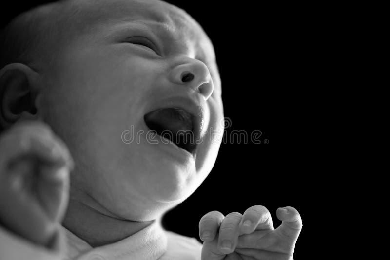 Retrato de um menino recém-nascido Gritar e gritar O homem era nascido Vida familiar No fundo preto imagens de stock royalty free