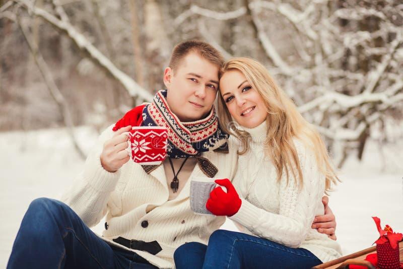Retrato de um par feliz imagens de stock