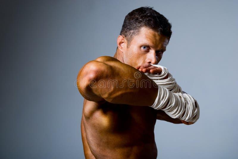 Retrato de um pugilista do retrocesso na posição de combate imagem de stock