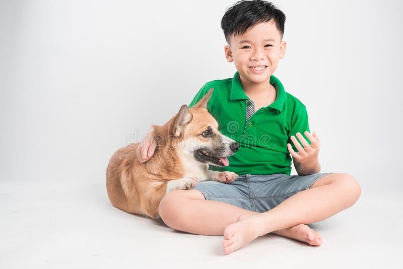 Retrato de um rapaz pequeno alegre que tem o divertimento com o cão do corgi de galês no assoalho no estúdio fotos de stock royalty free