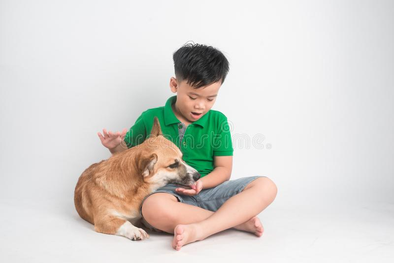 Retrato de um rapaz pequeno alegre que tem o divertimento com o cão do corgi de galês no assoalho no estúdio imagem de stock royalty free