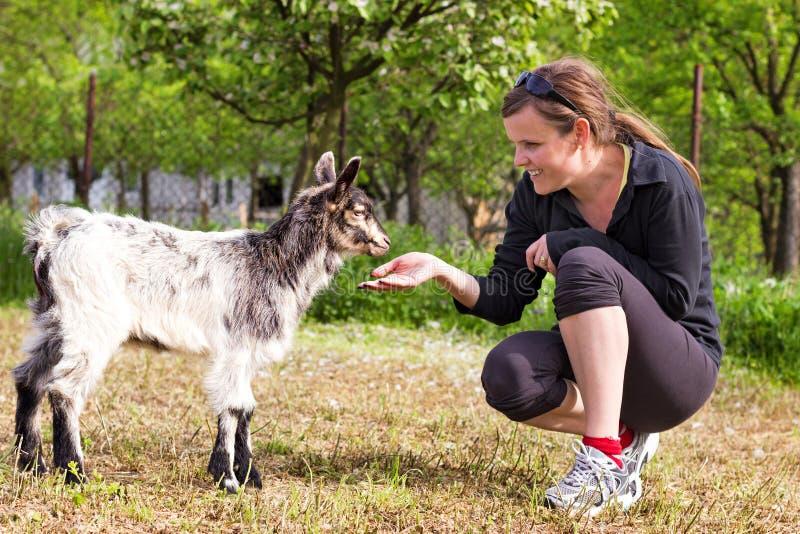 Retrato de uma jovem mulher que joga a cabra do bebê fotos de stock