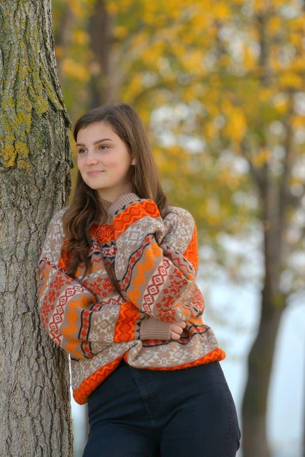 Retrato de uma menina adolescente na floresta foto de stock