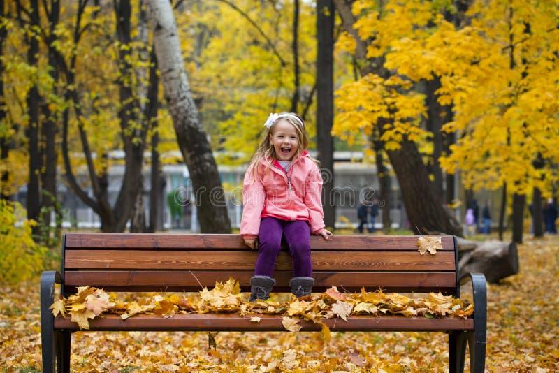 Retrato de uma menina bonita do liitle fotografia de stock royalty free