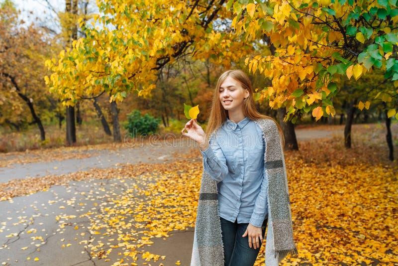 Retrato de uma menina bonita, doce, alegre que ande no parque na estação do outono foto de stock