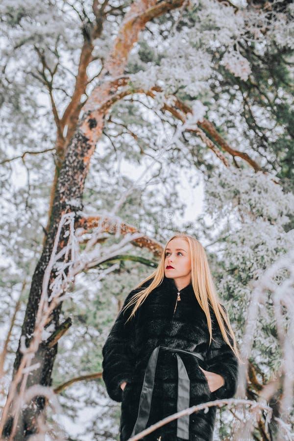 Retrato de uma menina com seu cabelo louro longo na foto retro do efeito nevado da floresta, grão foto de stock royalty free