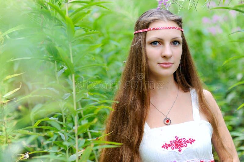 Retrato de uma menina eslavo bonita nova com cabelo longo e o vestido étnico eslavo nos arvoredos da grama alta fotografia de stock