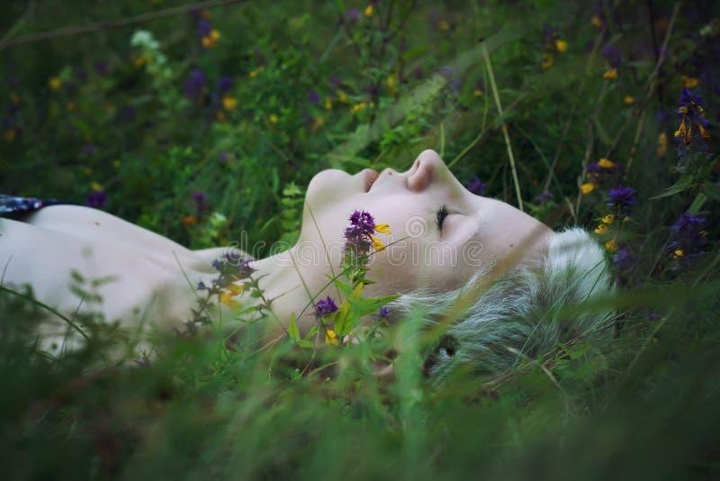 Retrato de uma menina loura nova que encontra-se em uma grama da floresta imagem de stock