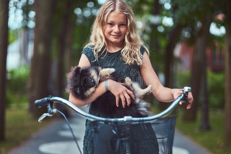 Retrato de uma menina loura pequena em um vestido ocasional, cão bonito do spitz das posses Passeio em uma bicicleta no parque imagem de stock royalty free