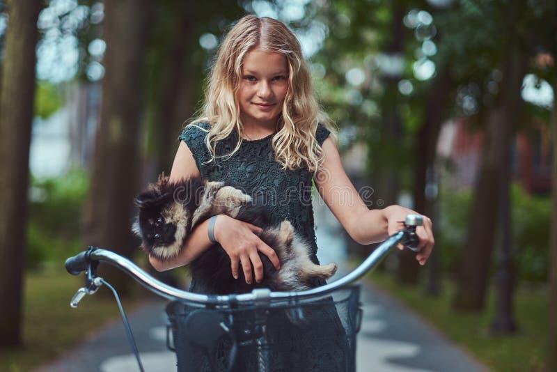 Retrato de uma menina loura pequena em um vestido ocasional, cão bonito do spitz das posses Passeio em uma bicicleta no parque imagem de stock