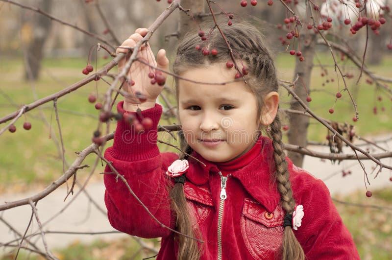 Retrato de uma menina triguenha nova imagem de stock