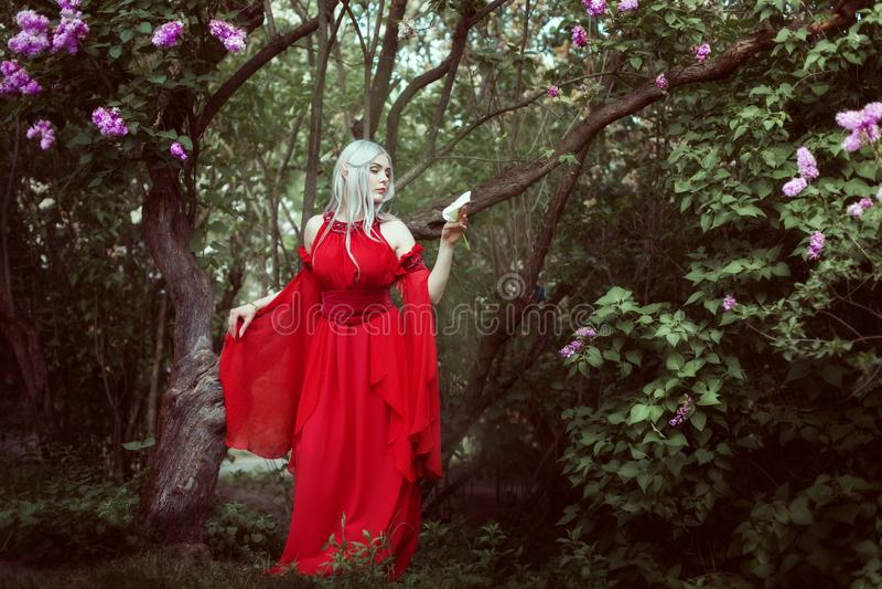 Retrato de uma mulher bonita do duende em um vestido vermelho fotos de stock royalty free