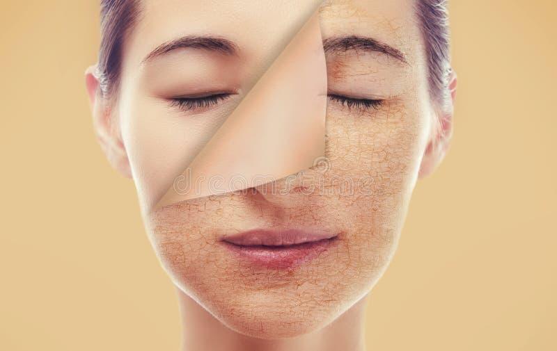 Retrato de uma mulher com uma pele lisa nova imagens de stock