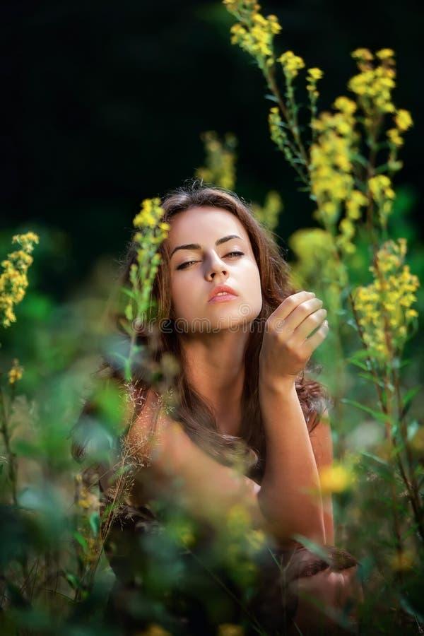 Retrato de uma mulher nova no campo de flores fotografia de stock