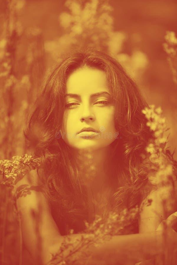 Retrato de uma mulher nova no campo de flores fotografia de stock royalty free