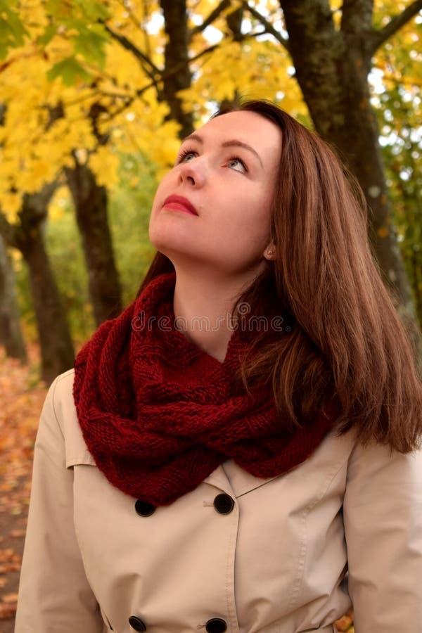 Retrato de uma mulher nova que olha acima fotos de stock royalty free